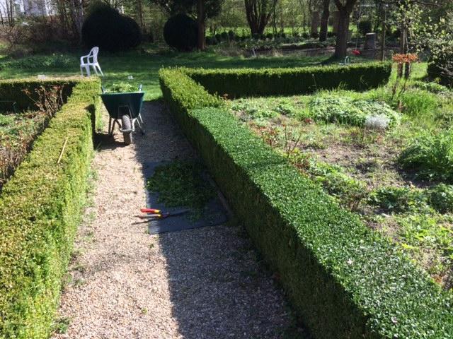 Buchsschnitt im Schlossgarten
