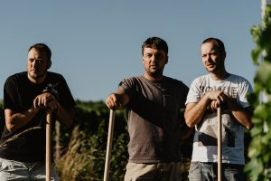 Die drei Wein von 3 Winzer