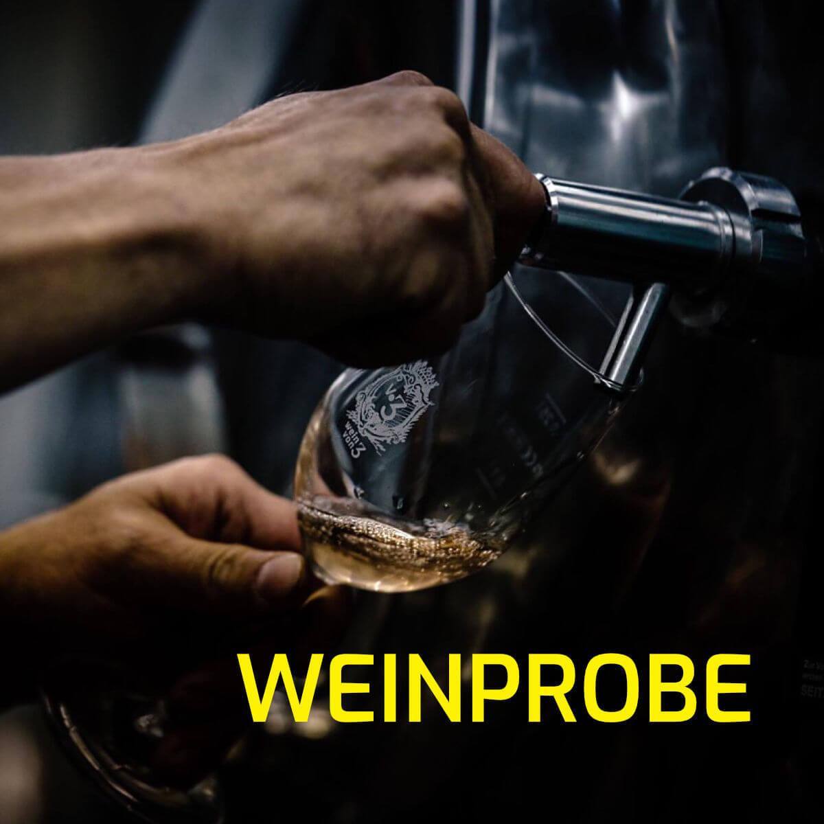 fränkisches Bioland Weingut auf Schloß Zeilitzheim in Franken in der Nähe von Würzburg_Wein von 3_Photographed by Selene adores_5