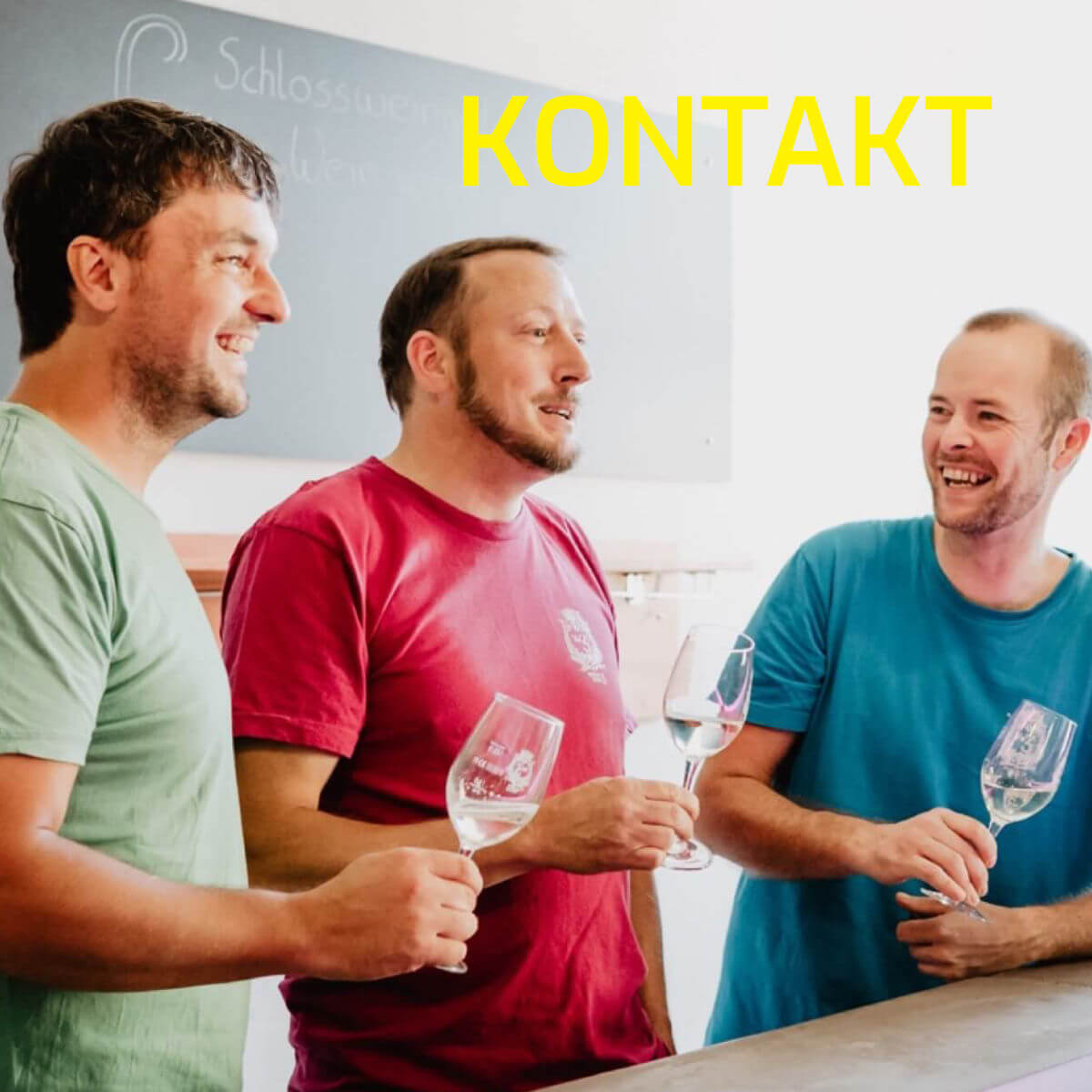 fränkisches Bioland Weingut auf Schloß Zeilitzheim in Franken in der Nähe von Würzburg_Wein von 3_Photographed by Selene adores_9